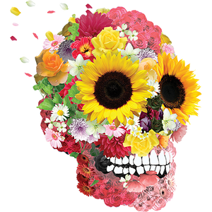 Skull Flower Heat Transfer
