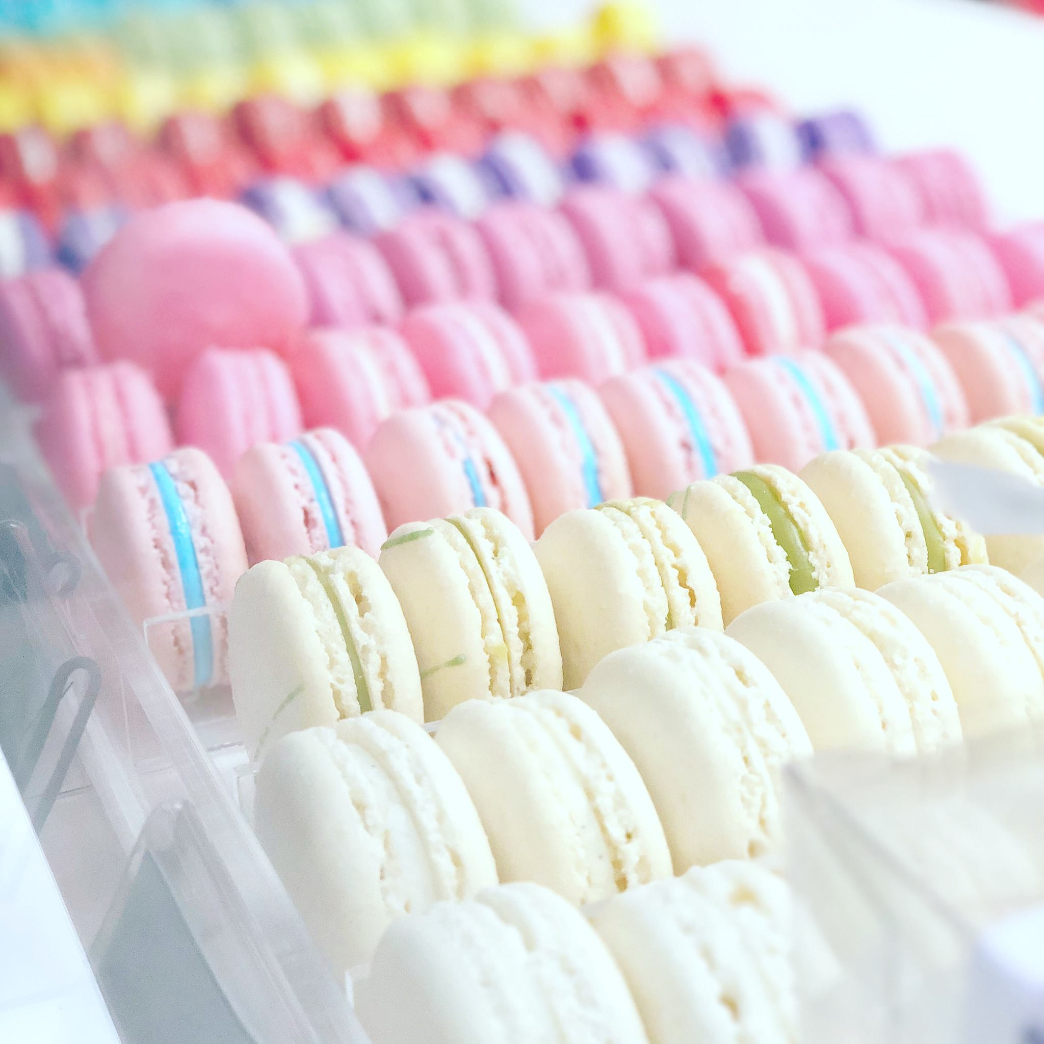 Corporate French Macaron Package (50 pack) - Chick Boss Cake London Ontario