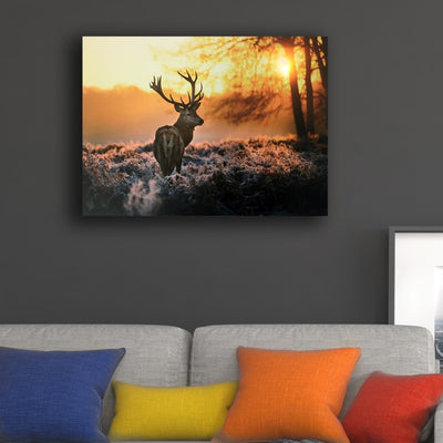 DEER IN SUNRISE LED LIGHT UP EDITION CANVAS