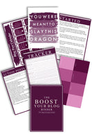 The Boost Your Blog Binder