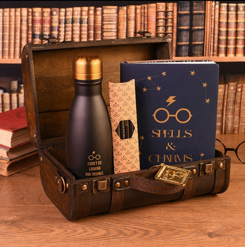 Harry Potter Cofre Set Regalo Premium Trouble Friends