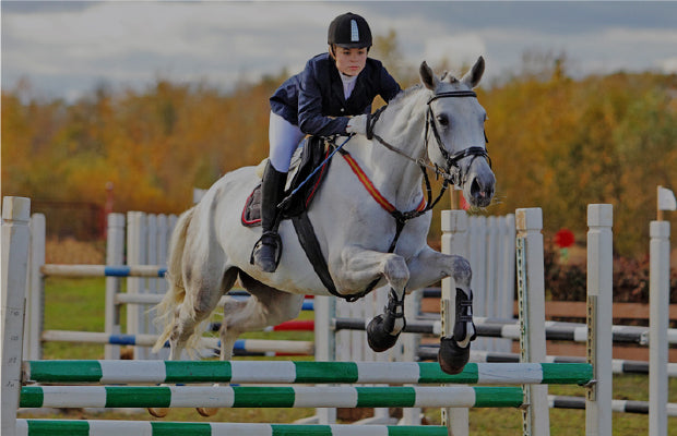 Image result for The Ultimate Superfood For Horses