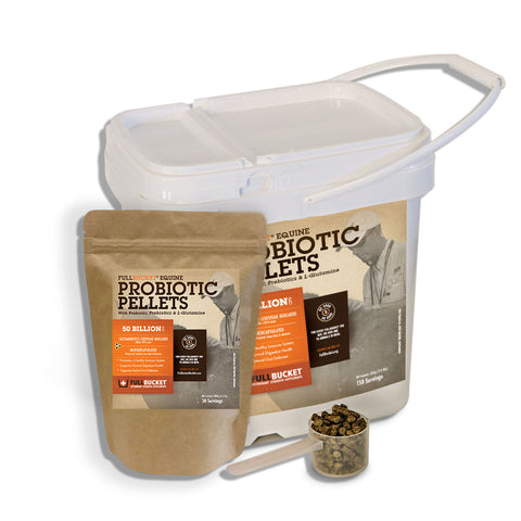 Equine Probiotic Pellets (50 Billion)