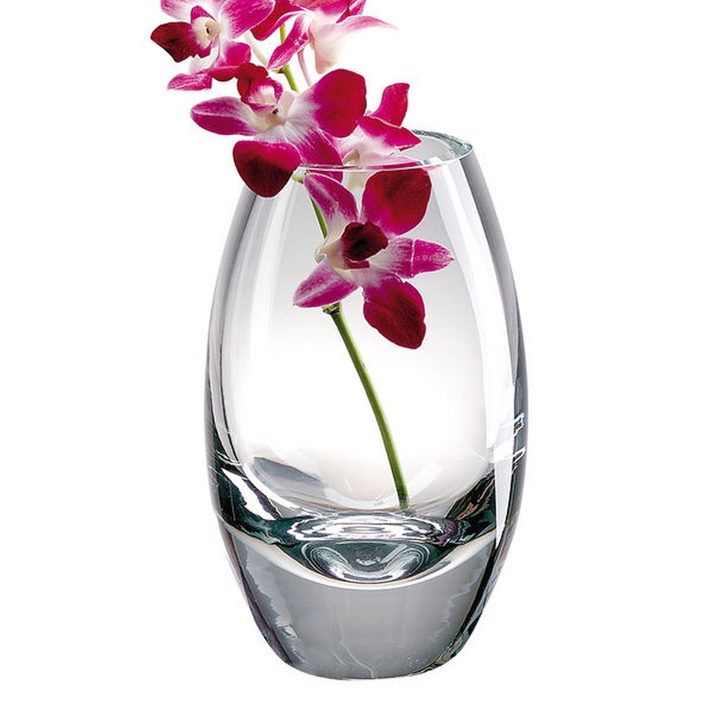 Radiant European Clear Crystal Vase - Nature Home Decor