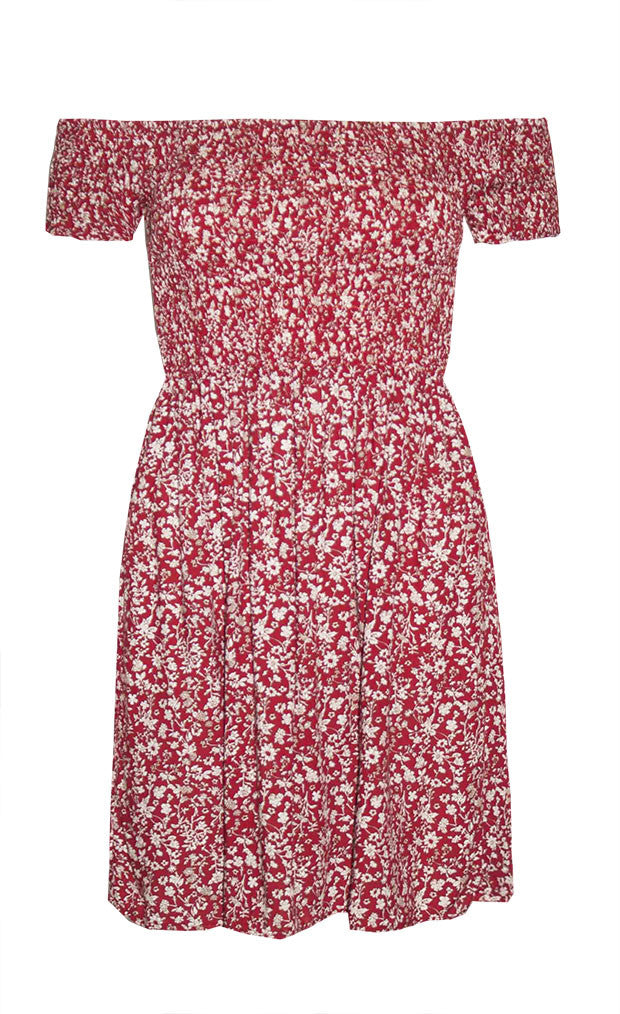 Alexia Red Floral Dress