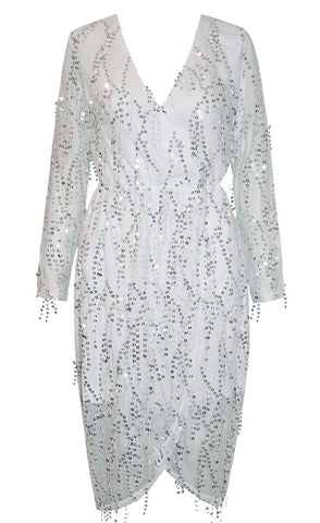 Swift Silver Sequin Dress