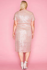 Esme Rose Gold Sequin Dress