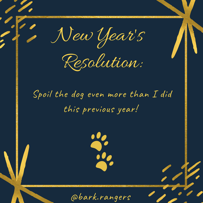 New Year, New Dogmom Goals!