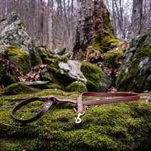 Load image into Gallery viewer, The Mountaineer - Two Tone Leash - Zion Brown
