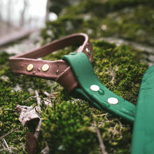 Load image into Gallery viewer, The Explorer Leash - Acadia Green