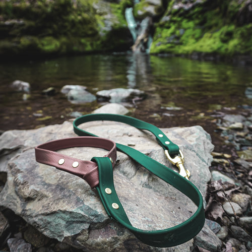 The Mountaineer - Two Tone Leash - Acadia Green