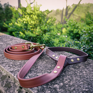 The Mountaineer - Two Tone Leash - Zion Brown