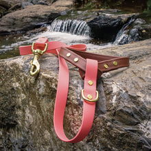 Load image into Gallery viewer, The Mountaineer Leash - Yosemite Pink