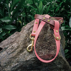 The Mountaineer Leash - Yosemite Pink