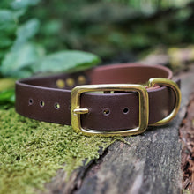 Load image into Gallery viewer, The Explorer - Two Tone Collar - Zion Brown