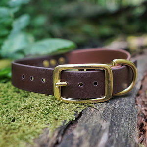 The Explorer - Two Tone Collar - Zion Brown