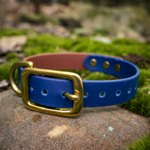 The Explorer Collar - Rainier Blue