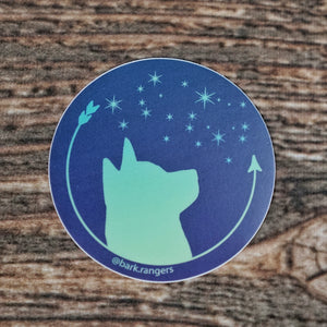 Star Gazer - Waterproof Decal