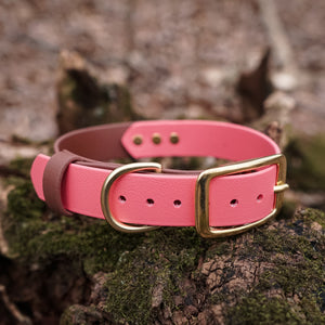 The Explorer Collar - Yosemite Pink