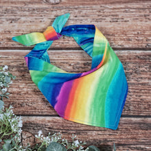 Load image into Gallery viewer, Love Wins - Reversible Bandana