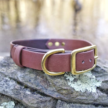 Load image into Gallery viewer, The Explorer Collar - Canyon Tan