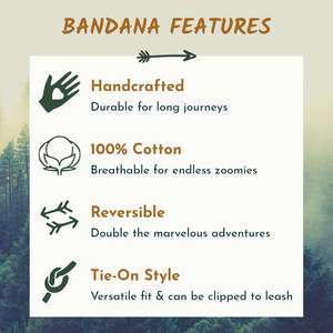 Bear Necessities - Reversible Bandana
