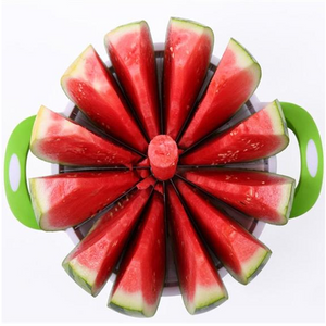 QUICK N EASY WATERMELON SLICER
