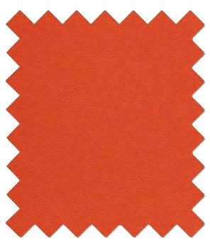 Burnt Orange Wedding Swatch - Wedding