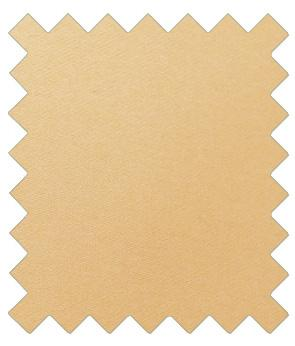 Butterscotch Wedding Swatch - Swatch