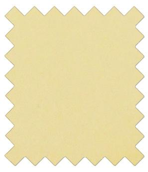 Canary Yellow Wedding Swatch - Wedding