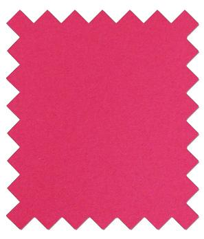 Cerise Pink Wedding Swatch - Wedding