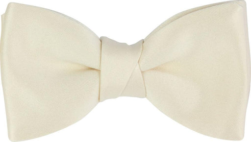 Champagne Ivory Boys Bow Tie - Childrenswear