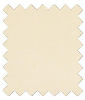 Champagne Ivory Wedding Swatch - Wedding