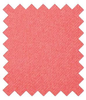 Coral Pink Wedding Swatch - Wedding