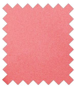 Coral Wedding Swatch - Swatch