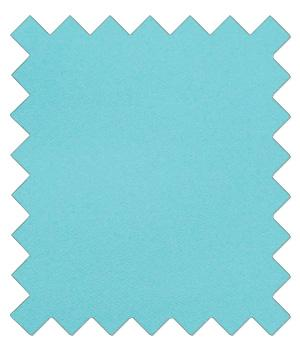 Light Turquoise Wedding Swatch - Wedding