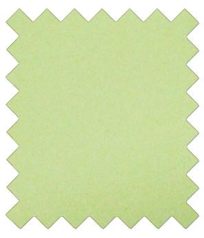 Lime Green Wedding Swatch - Wedding