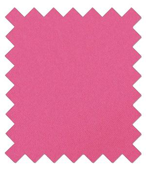 Lipstick Pink Wedding Swatch - Wedding