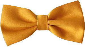 Orange Gold Bow Tie - Wedding