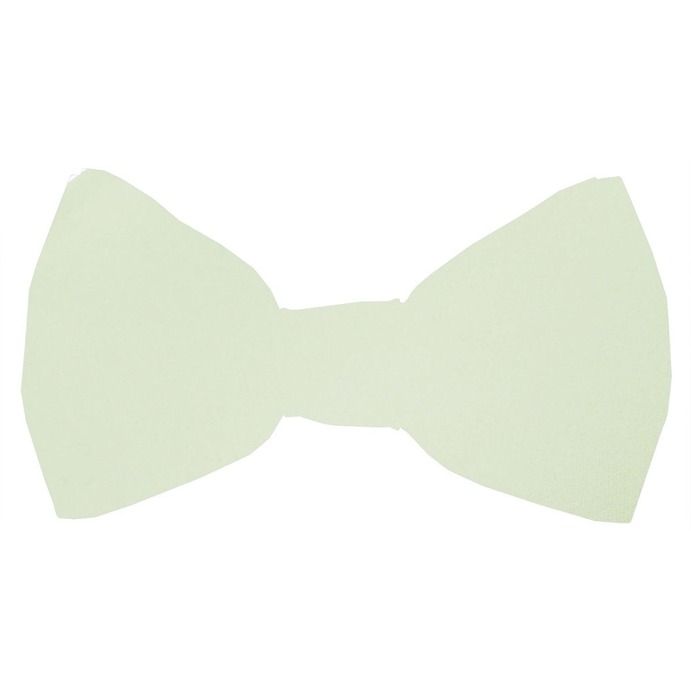 Pale Mint Boys Bow Tie - Childrenswear