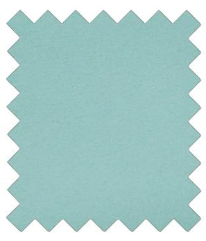 Robin Egg Blue Wedding Swatch - Wedding
