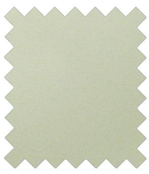 Silver Birch Wedding Swatch - Swatch