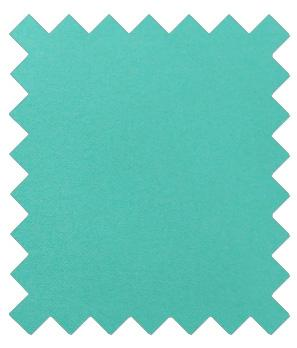 Spearmint Wedding Swatch - Wedding
