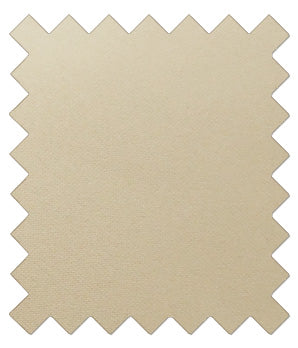 Ecru Wedding Swatch