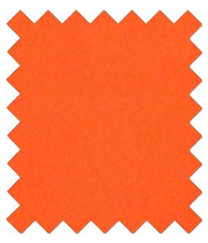 Tangerine Wedding Swatch - Wedding