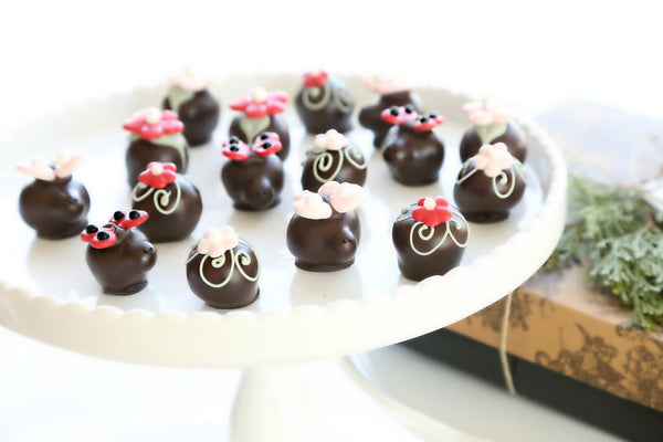 16-Piece Valentine's Day Flowers and Love Bugs Cordial Cherries