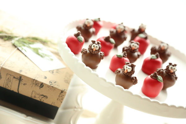 Chocolate Truffles ~ 16-Piece Gift ~ Apples and Owls