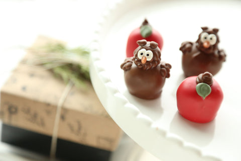 Chocolate Truffles  ~ 4-Piece Gift ~ Apples and Owls