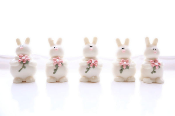 16-Piece Bunnies in the Flower Patch