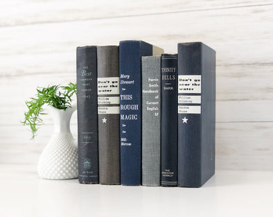 Blue Home Decor / Decorative Book Set